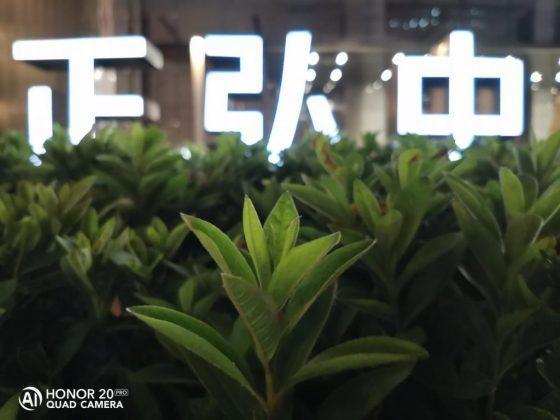 Снимок с ярким освещением на фоне