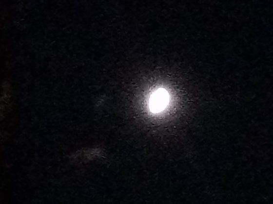 Redmi 6a - ночной снимок макро