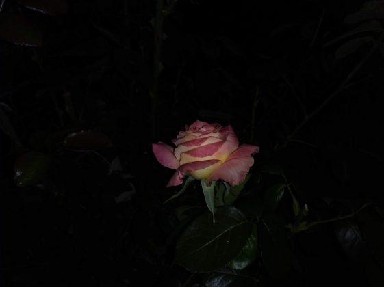 Redmi 7a - ночной снимок вторая попытка
