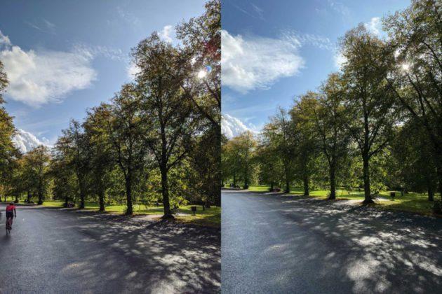 Как снимают днем Pixel 4 и iPhone 11 Pro