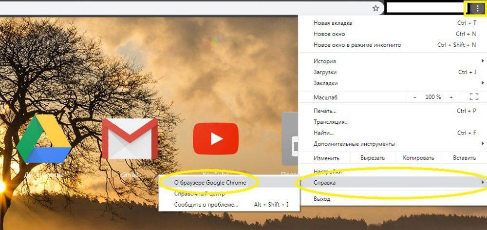 Узнать версию Chrome 78 - 1