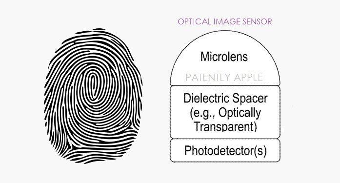 Apple встроит сканер отпечатков пальцев под дисплеем