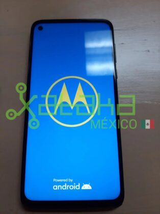 Moto G Stylus на фотографиях