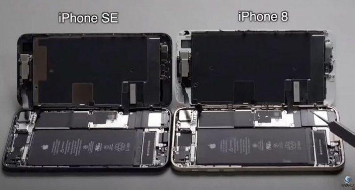 iPhone SE и iPhone 8 разобрали