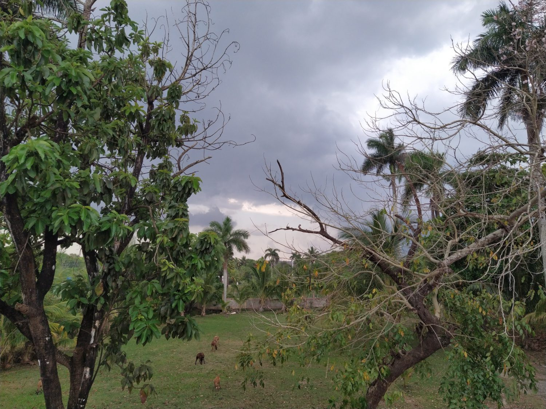 Фото Redmi Note 7