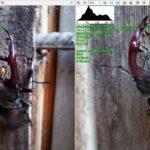 Сравнение макро и снимка с главного датчика