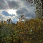 Снимок сделанный на Realme 7 Pro