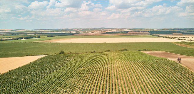Соучредитель «Монобанка» поучаствовал в создании приложения для продажи земли