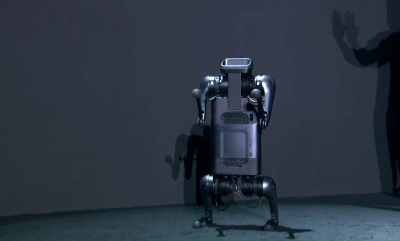 Первый робот-собака Xiaomi
